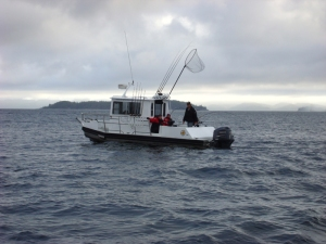 17-Sunds-Lodge-fishing-boat-send1