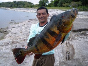 Guide-Aldeni-Elvis-Fonseca-with-28-pound-peacock-bass