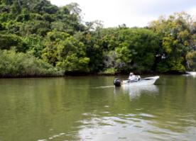 Panama-Big-Game-fishing-in--300x217